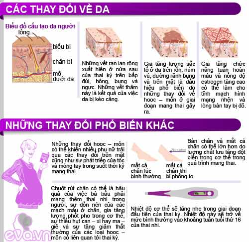 infographic: co the me bau thay doi the nao? - 7