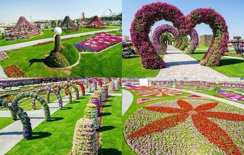 Thăm vườn hoa tự nhiên lớn nhất hành tinh - 10