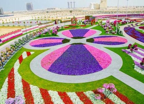 Thăm vườn hoa tự nhiên lớn nhất hành tinh - 13
