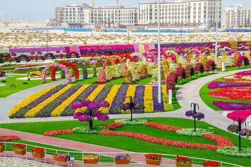 Thăm vườn hoa tự nhiên lớn nhất hành tinh - 2