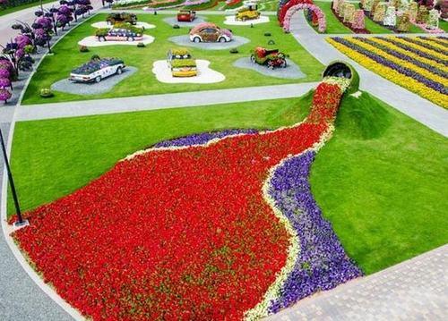 Thăm vườn hoa tự nhiên lớn nhất hành tinh - 7