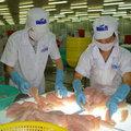 Mua sắm - Giá cả - Mỹ tăng thuế chống bán phá giá cá tra Việt Nam