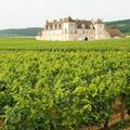 """Đi đâu - Xem gì - """"Thiên đường"""" rượu nho lớn nhất nước Pháp"""