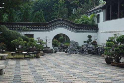 lang thang hong kong nhu trong phim tvb - 13