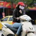 Tin tức - Bắc Bộ đón không khí lạnh tăng cường