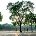 Tin tức - Thời tiết hanh khô, nguy cơ cháy nổ tăng cao