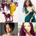 Làm đẹp - 6 sao Việt 'ế chồng' vẫn đẹp khó tin
