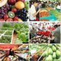 Mua sắm - Giá cả - Tết 2014: Thực phẩm dư thừa, rau xanh ổn định