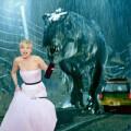 Làng sao - Hài hước ảnh chế Jennifer Lawrence tại QCV