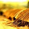 Mua sắm - Giá cả - Giá vàng mất mốc 35 triệu đồng/lượng