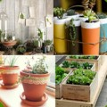 Nhà đẹp - 4 giải pháp trồng rau tại nhà cực tiện