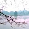 Tin tức - Thủ đô Hà Nội: Sương mù xuất hiện vào buổi sáng