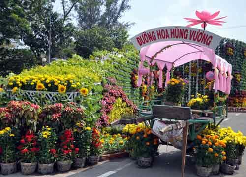 my tho: ruc ro duong hoa hung vuong - 1