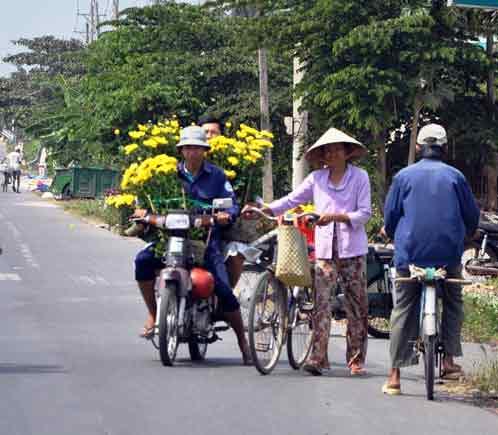 my tho: ruc ro duong hoa hung vuong - 9