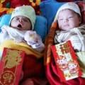 Làm mẹ - Cái Tết đầu của 2 bé song sinh mất cha