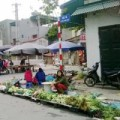 Mua sắm - Giá cả - Thực phẩm, rau xanh sau Tết đứng yên