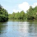Nhà hướng sông làm sao cho đẹp?
