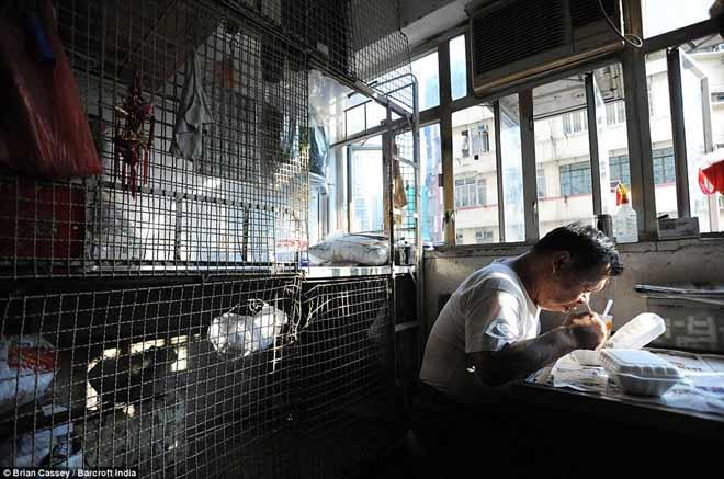 phan nguoi trong nhung long sat o hong kong - 11