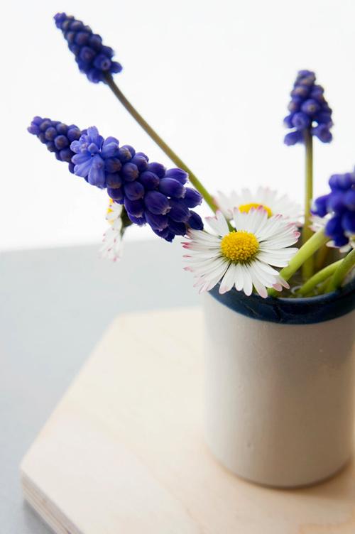 trong hoa chuong xanh chao xuan ruc ro - 12