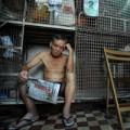Tin tức - Phận người trong những lồng sắt ở Hong Kong