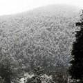 Lại xuất hiện mưa tuyết ở Sapa