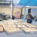 Mua sắm - Giá cả - Bắt giữ 800 con gia cầm lậu từ Trung Quốc