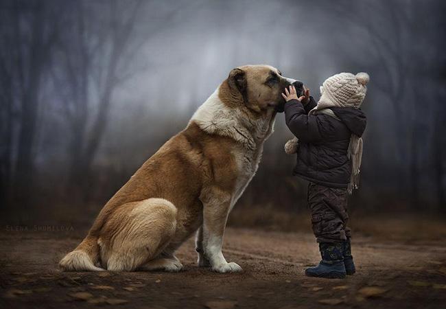 Những hình ảnh tuyệt vời của Elena Shumilova đưa người xem vào một thế giới xinh đẹp xoay quanh hai chàng trai và những loài động vật đáng yêu như chó, mèo, thỏ, vịt... Tận dụng màu sắc tự nhiên, điều kiện thời tiết và môi trường xung quanh đầy lý tưởng, người nghệ sĩ tài năng đã tạo nên những bức ảnh thật ấm cúng.