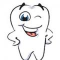 Làm mẹ - Hé lộ bí mật LỚN NHẤT về răng của trẻ