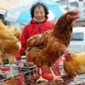 Tin tức - Hong Kong công bố ca nhiễm cúm H7N9 thứ 6