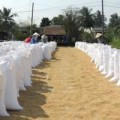 Mua sắm - Giá cả - Bộ Tài chính tăng giá lúa thu mua tạm trữ