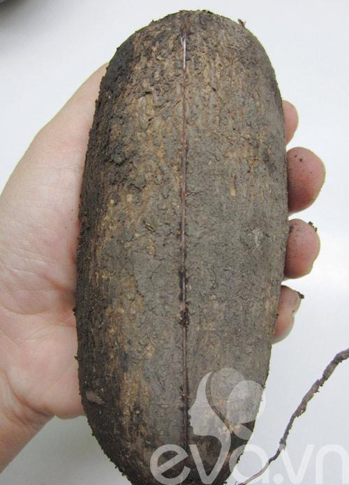 Bánh khoai mì nướng thơm lừng - 1