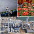 Tin tức - Sự sống kỳ diệu ở Fukushima 3 năm sau động đất