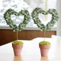 Nhà đẹp - Cây tình yêu ngọt ngào cho Valentine trắng