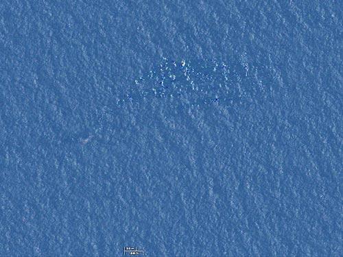 vu mh370: nhieu manh vo troi noi o bien malacca - 2