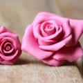 Bếp Eva - Khéo tay làm hoa hồng từ fondant