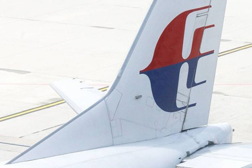 may bay malaysia airlines bi dan chim dam vo kinh - 1