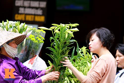 hoa loa ken khoe sac trong tiet troi thang tu - 16