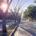 Tin tức - Hà Nội ngày nắng, mưa tăng về đêm