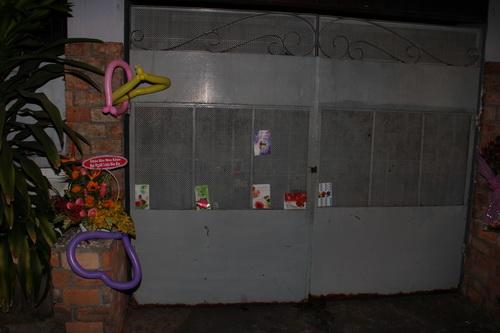 fan mang hoa, bong bay den tang chanh tin - 5