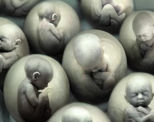 bi an: thai nhi khoc trong bung me - 2
