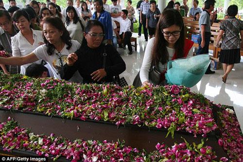 bat khoc nhung hinh anh dau thuong vu qz8501 - 17