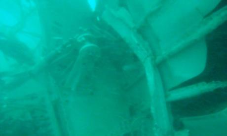 phat hien tieng 'ping' tai noi tim kiem qz8501 - 2