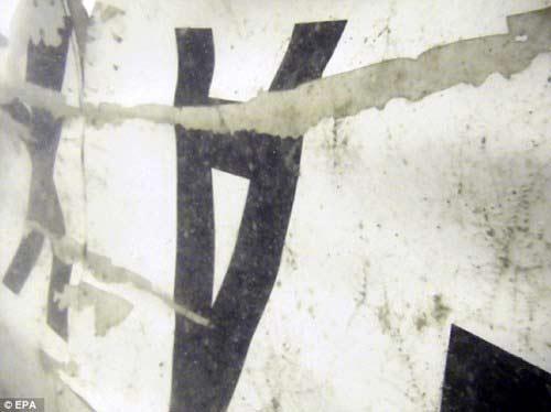 phat hien tieng 'ping' tai noi tim kiem qz8501 - 3