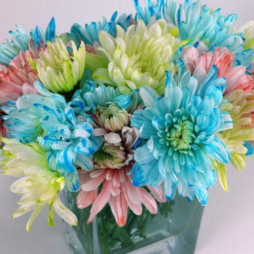 bi quyet nhuom mau hoa ruc ro don tet - 8