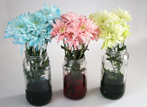 bi quyet nhuom mau hoa ruc ro don tet - 7
