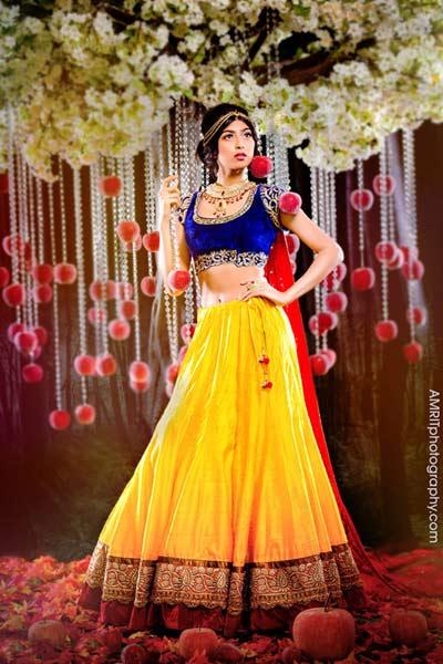 Cô dâu Ấn Độ hóa thân thành công chúa trong cổ tích-1