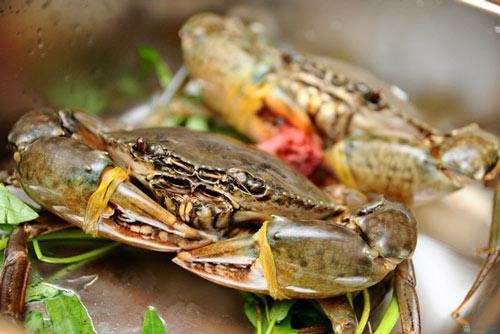 Cho trẻ ăn dặm: Đừng sợ hải sản!-2