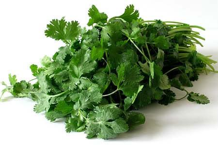 Lợi ích sức khỏe của rau mùi ít người biết đến - 1