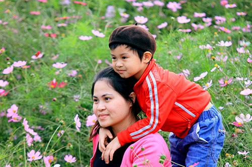 Đổ xô chụp ảnh tại thung lũng hoa Hồ Tây-12