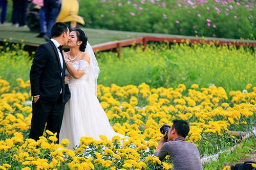Đổ xô chụp ảnh tại thung lũng hoa Hồ Tây-9